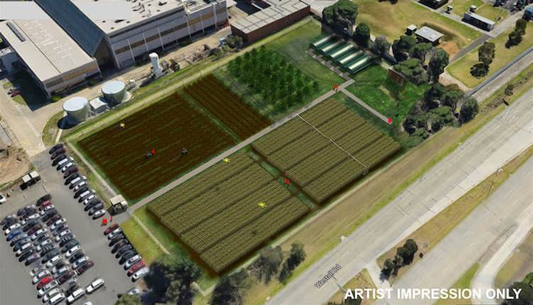 'Australia-first' agtech research centre in Melbourne