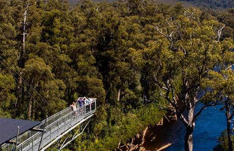 TasmaNet scores connectivity grant for two Tassie icons