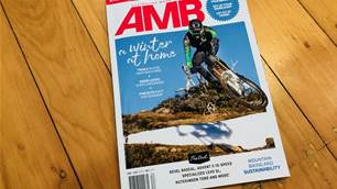 In this Issue - AMB #183