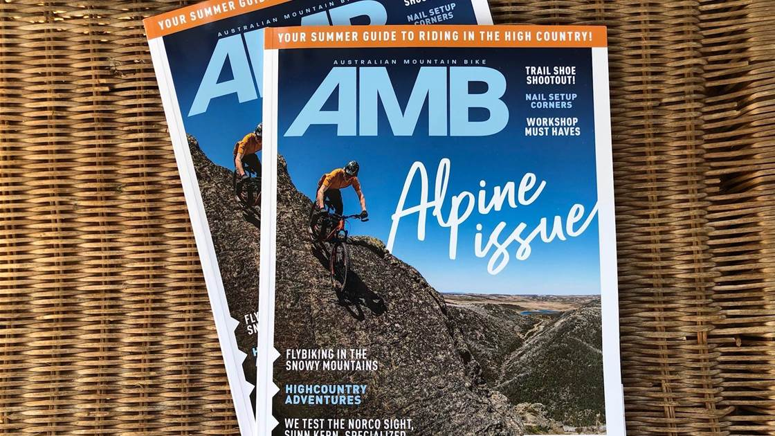 In this Issue - AMB #179