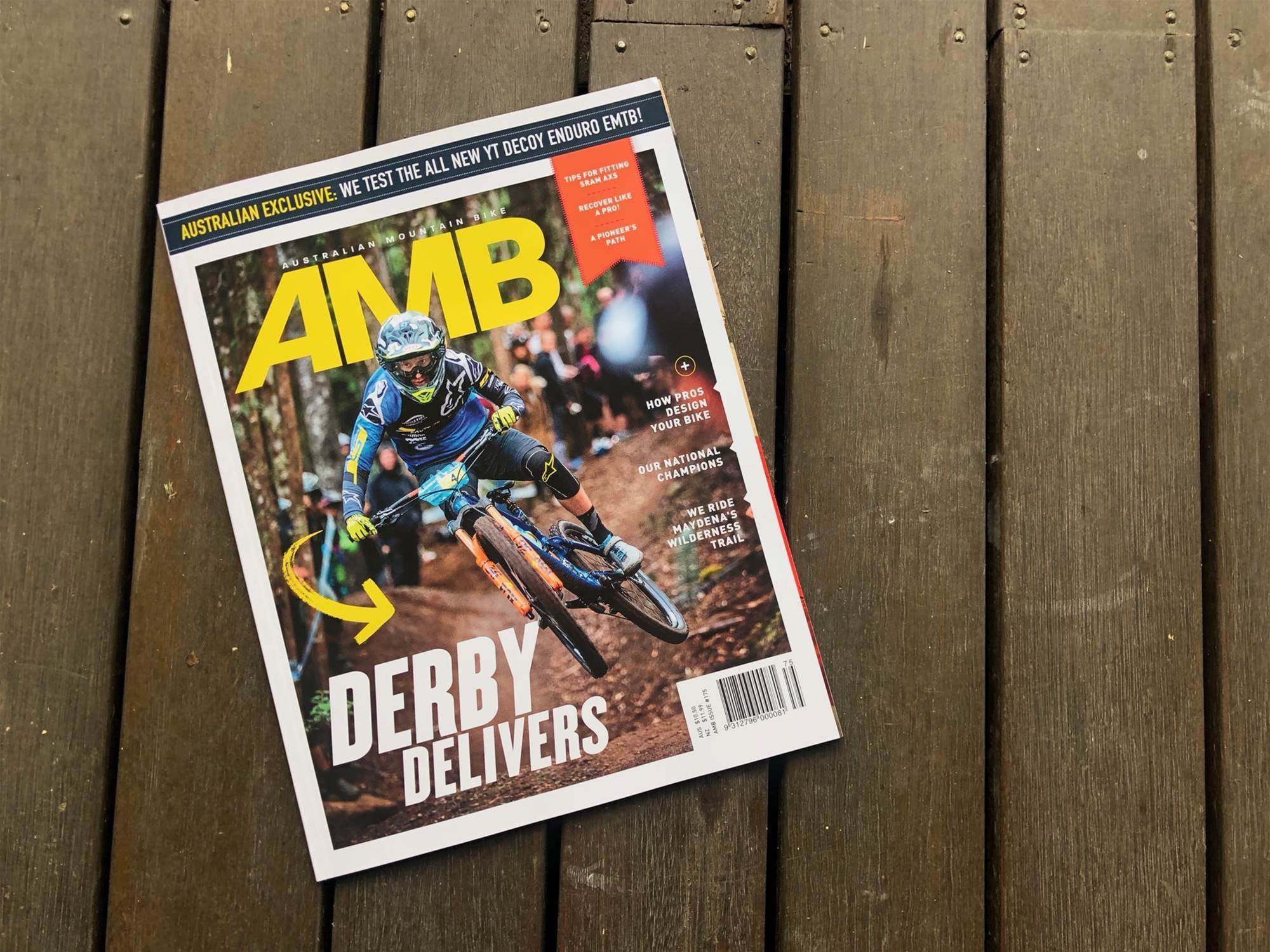 In this Issue - AMB #175