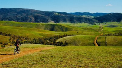 Cattlemen 100 MTB - a big day in Omeo
