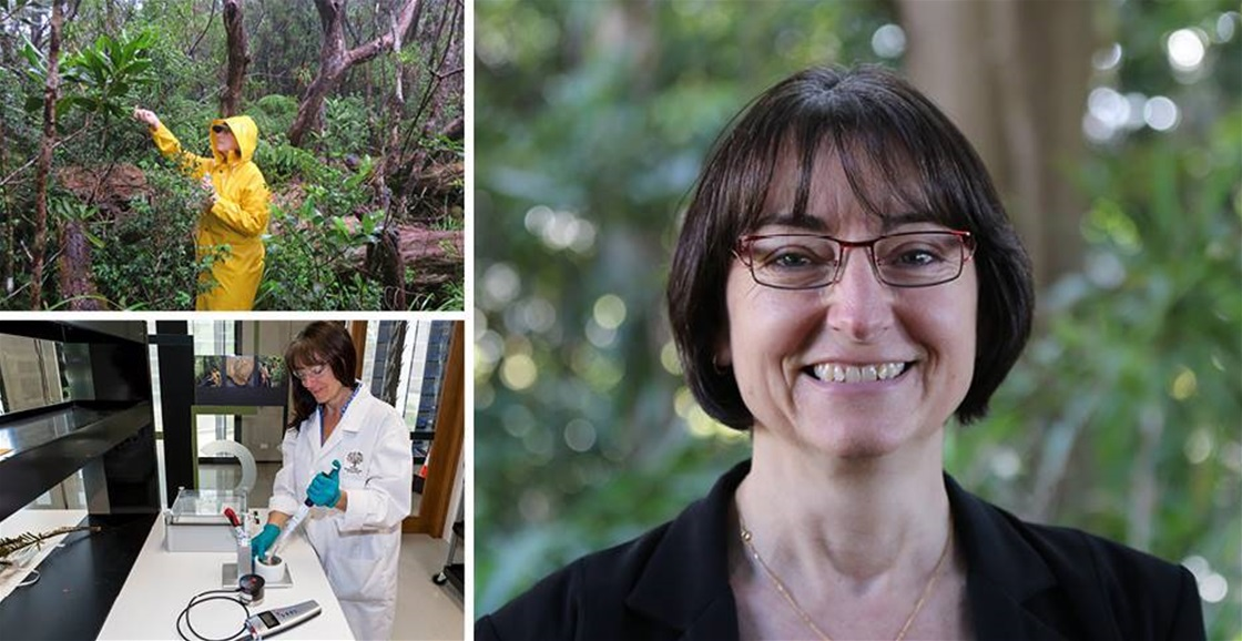 Meet A Horticultural Scientist