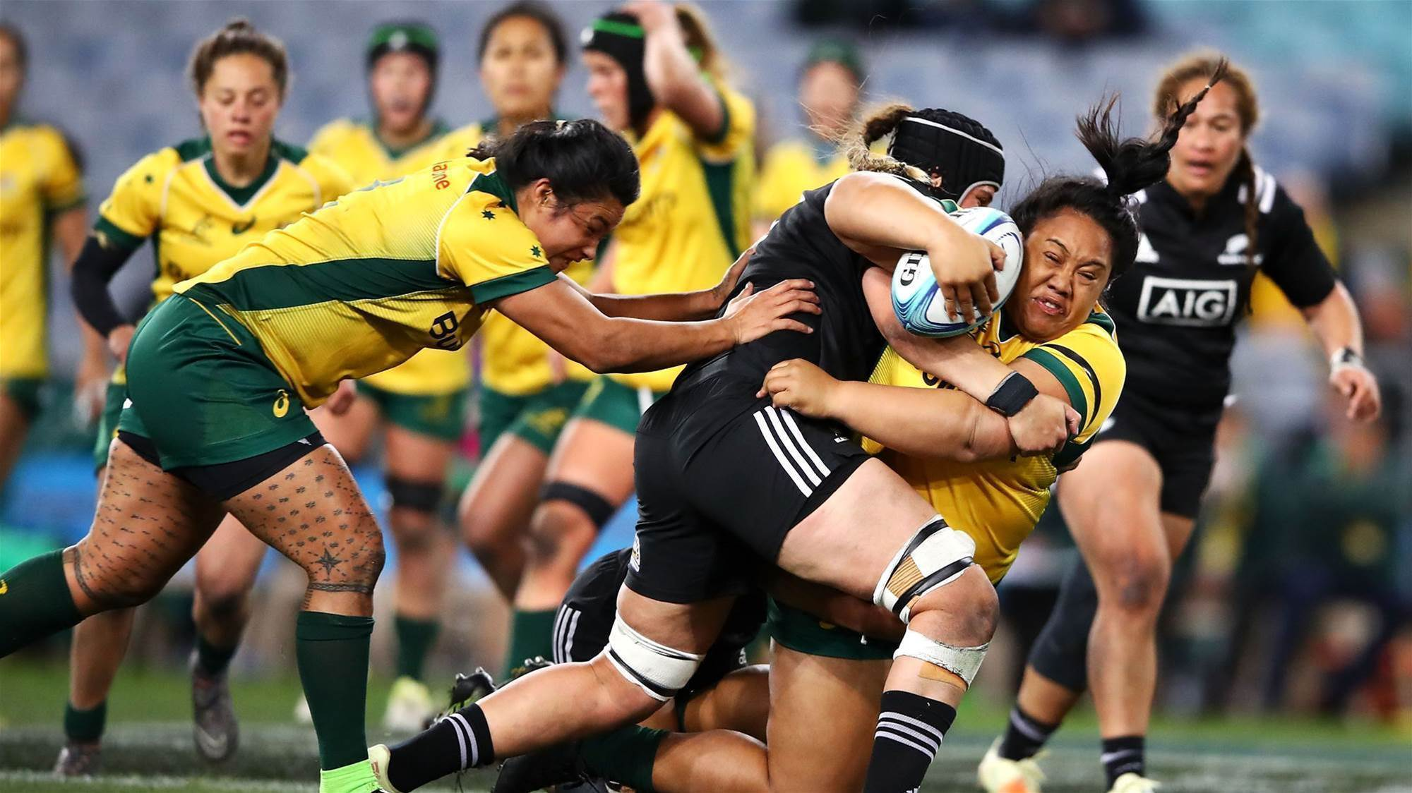 Ferns Wary of Wallaroos