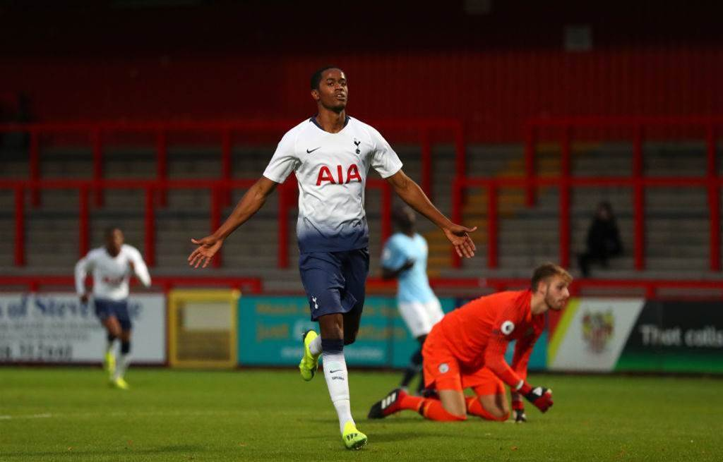 Melbourne City sign Tottenham forward