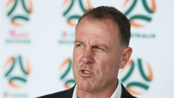 'FFA credibility at risk': Pressure over Stajcic sacking grows