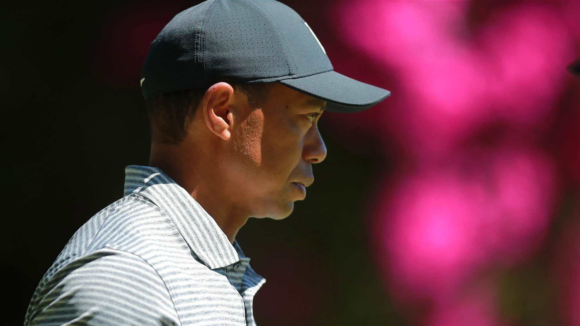 Tiger already focussed on Augusta