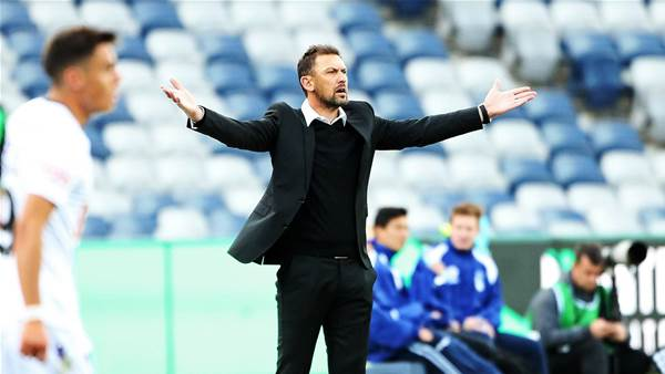 Glory's newbies need time: Popovic