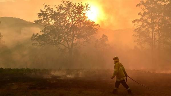 'I call my parents daily to see if their house is still up': Canberra star's devastating bushfire plea