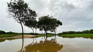 Opening round of Mayakoba Golf Classic rained out