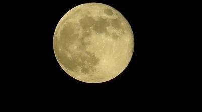 Roar's moon landing