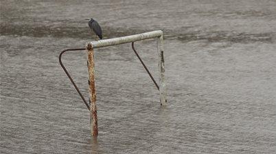 Sydney rain sees A-L, W-L games postponed