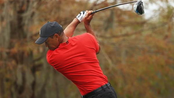 Tiger Woods returns to video games