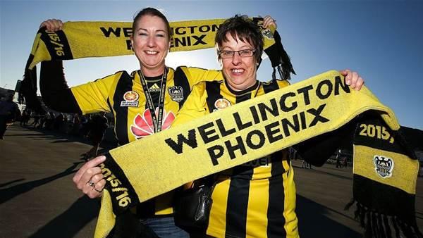 Wellington, Wollongong aiming for W-League club next season