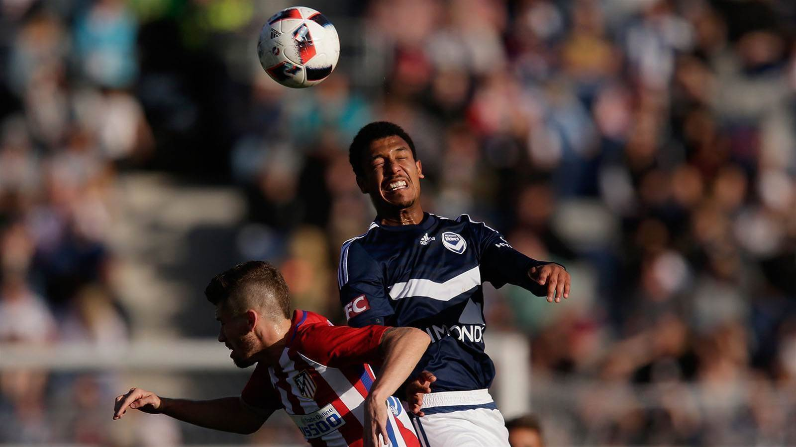 Wanderers snap up new DM