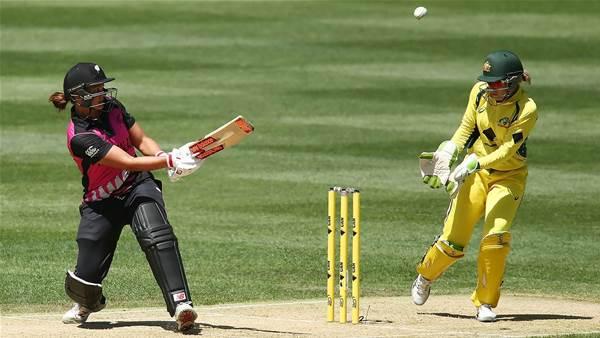 Big summer of cricket for Aussie women