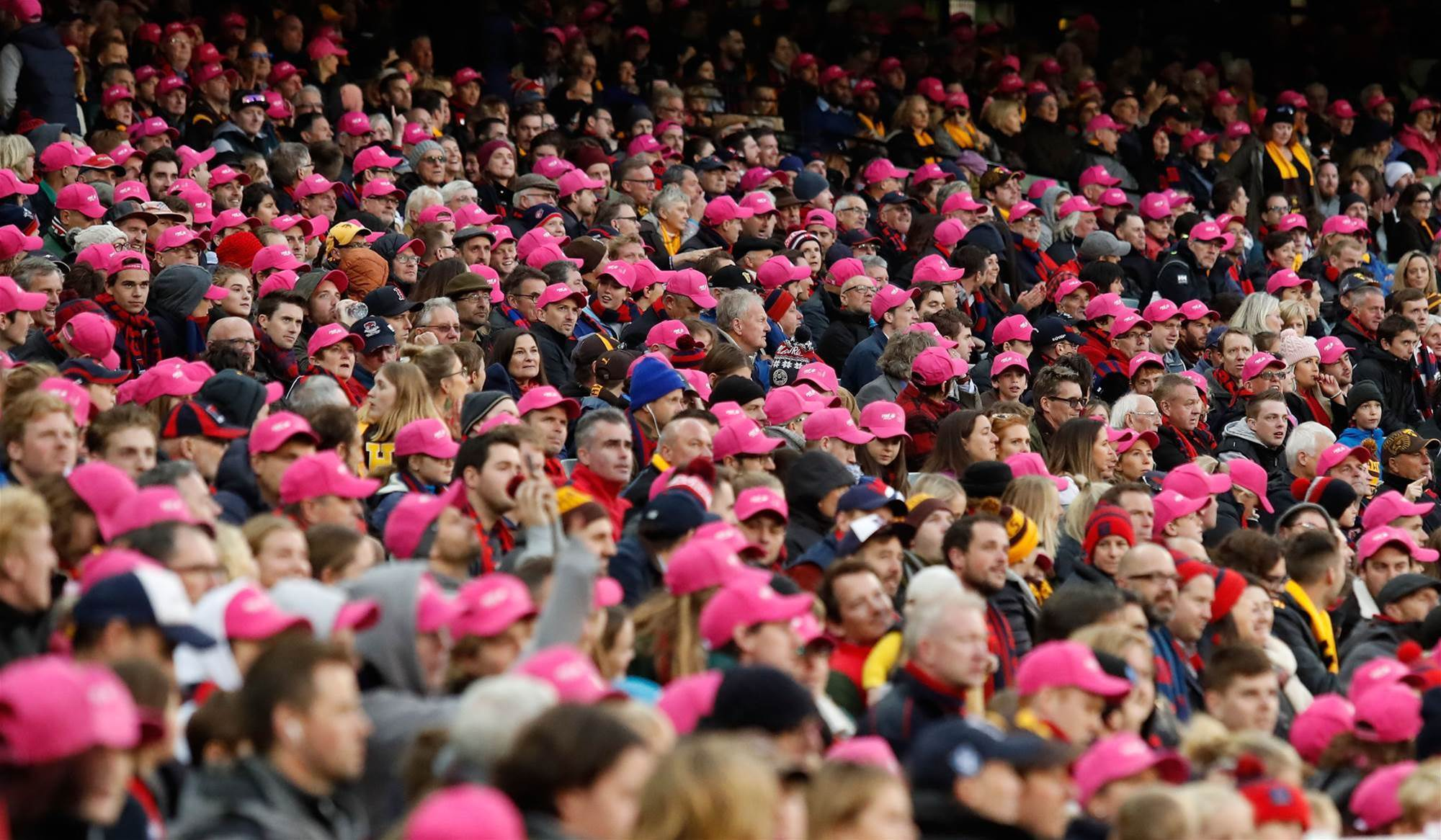 ICC reveals 39 percent of cricket fans are females