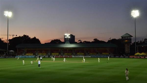 WBBL breaking attendance records