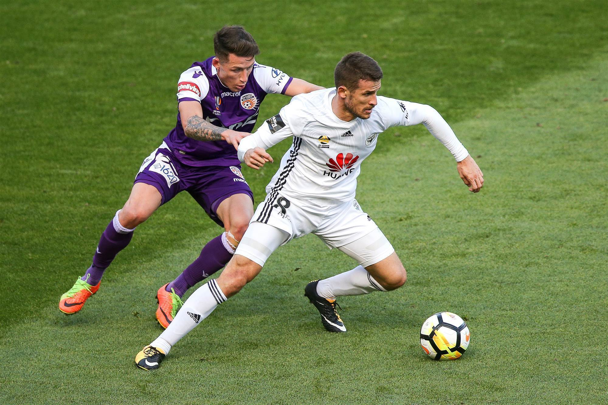 Vidosic: Nix take heart from Adelaide example