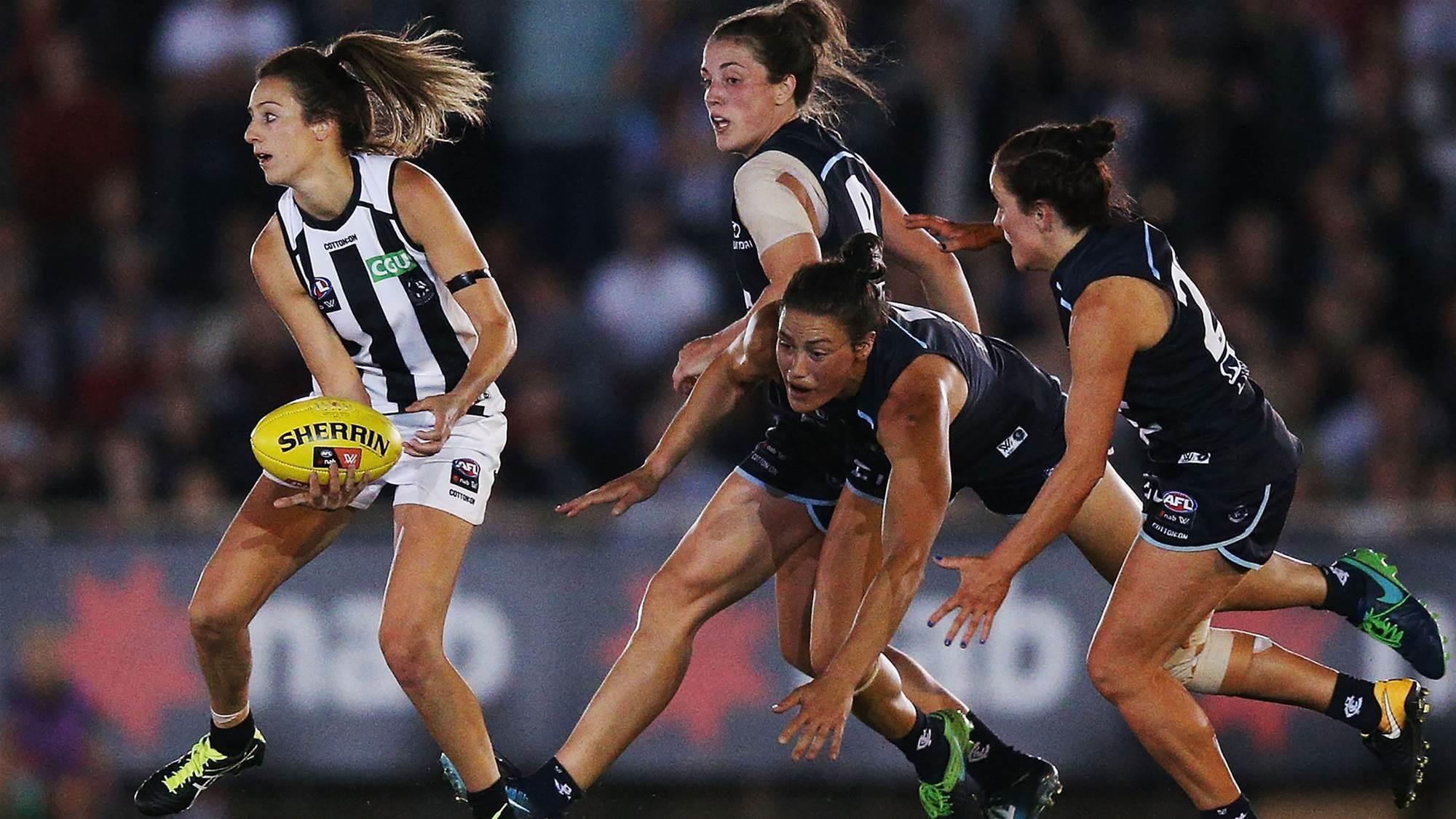 Chiocci re-signs with Pies