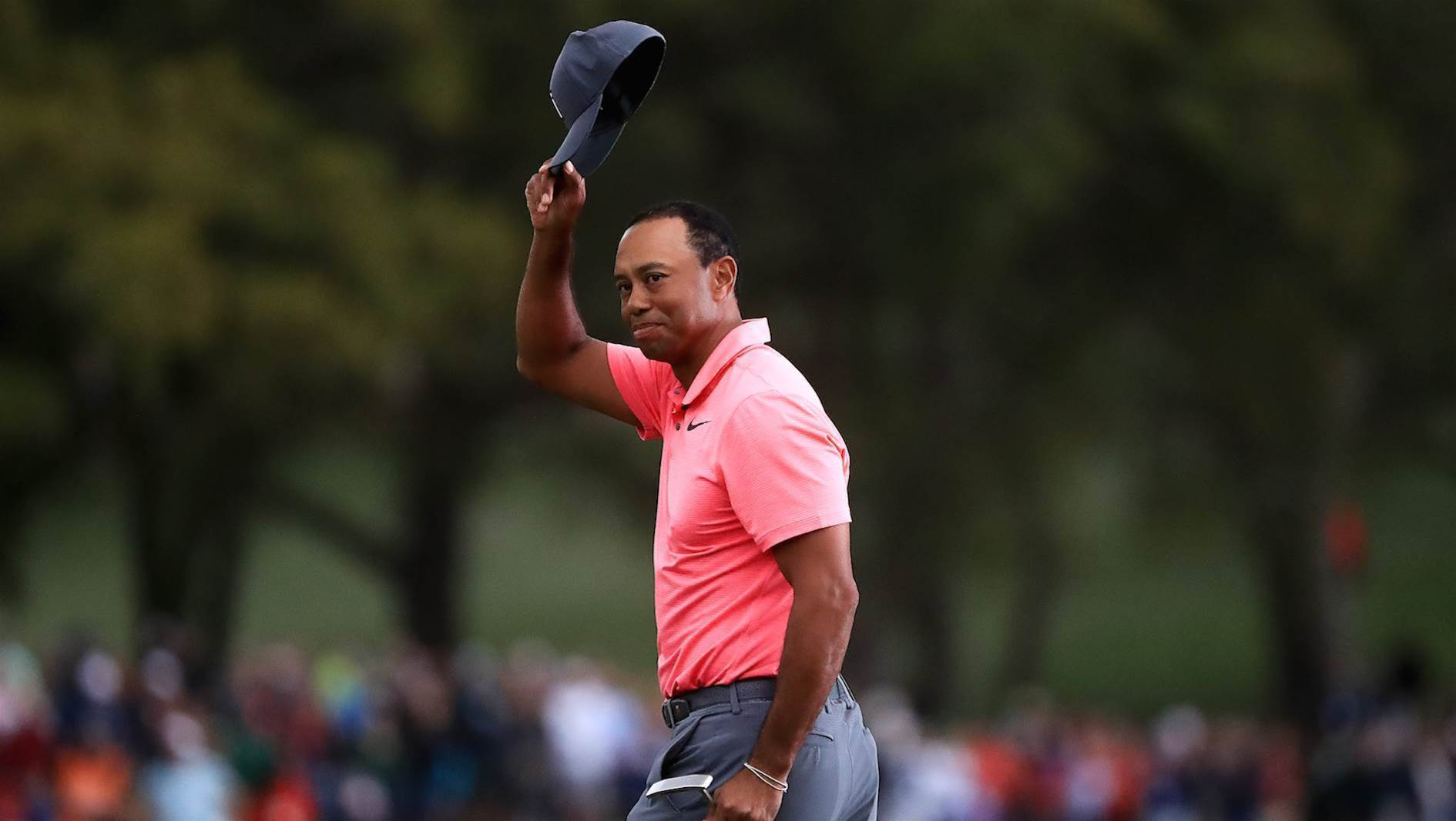 Tiger on the prowl at Valspar