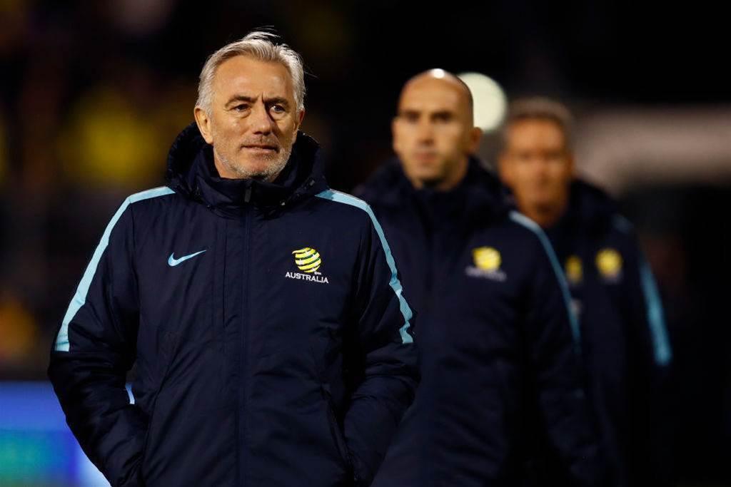 Van Marwijk flies back for A-League Grand Final