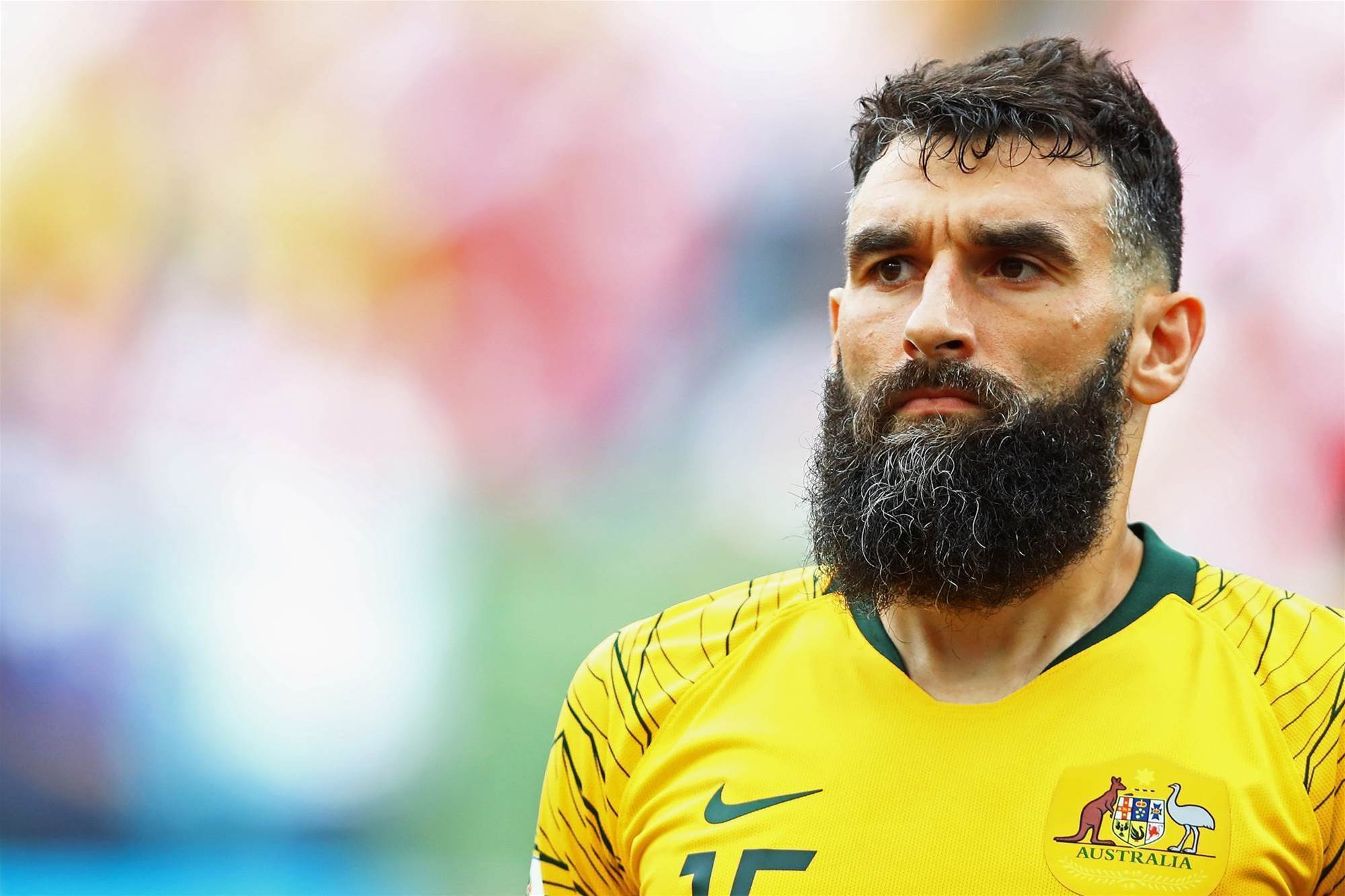 Bruce: Jedinak and co are going nowhere