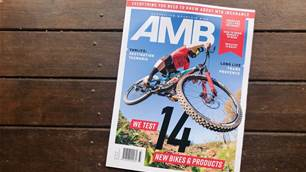 In this Issue - AMB #177