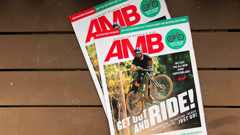 In this Issue - AMB #181