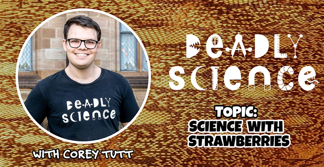 Deadly Science: Science With Strawberries
