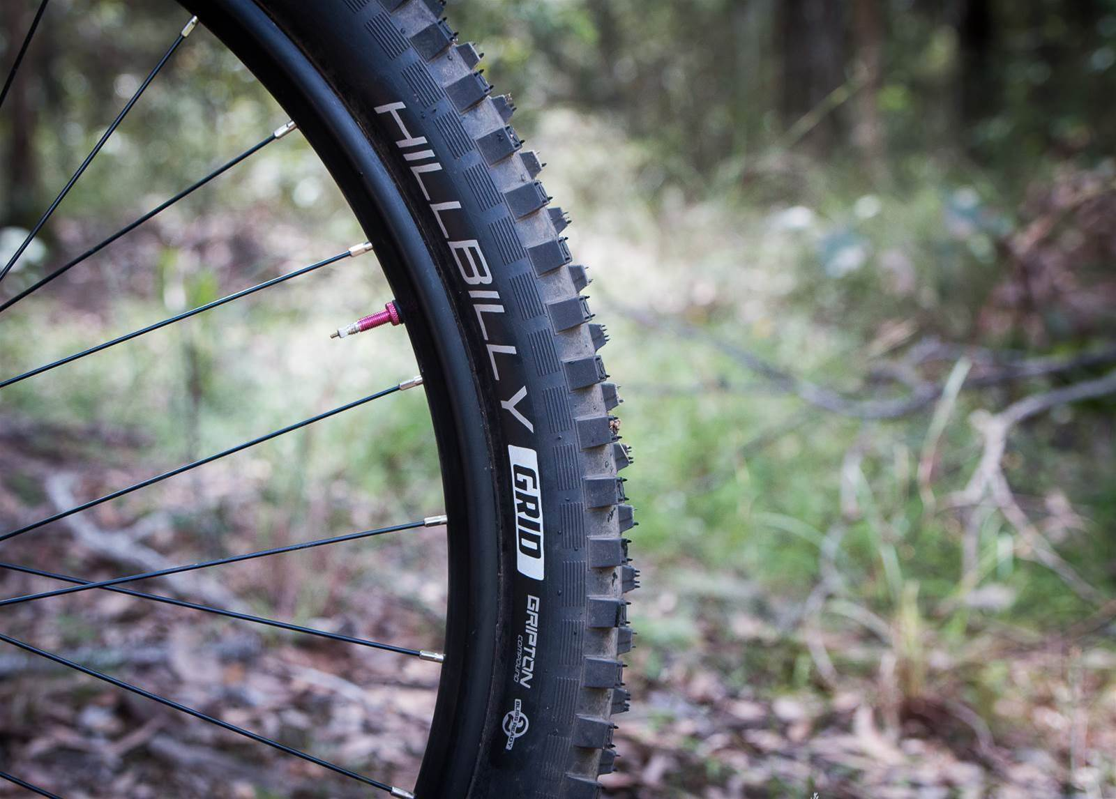 TESTED: Specialized Butcher and Hillbilly Gripton MTB tyres
