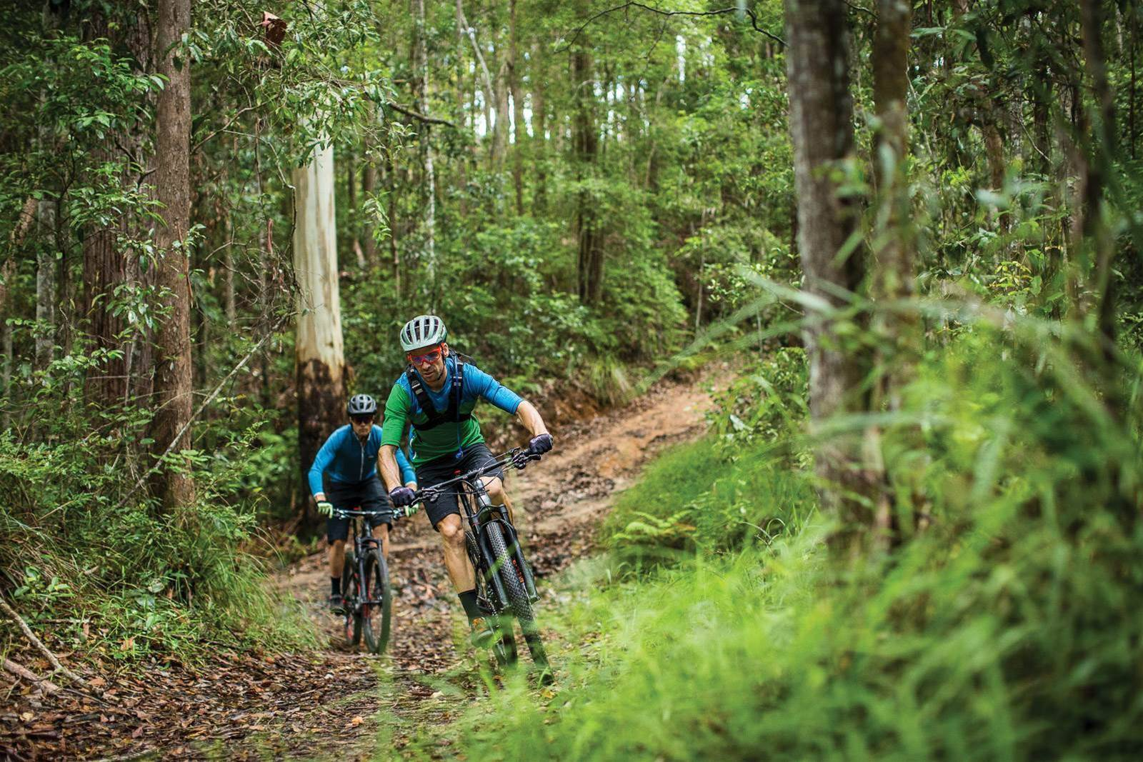 Navigating Noosa's trail network