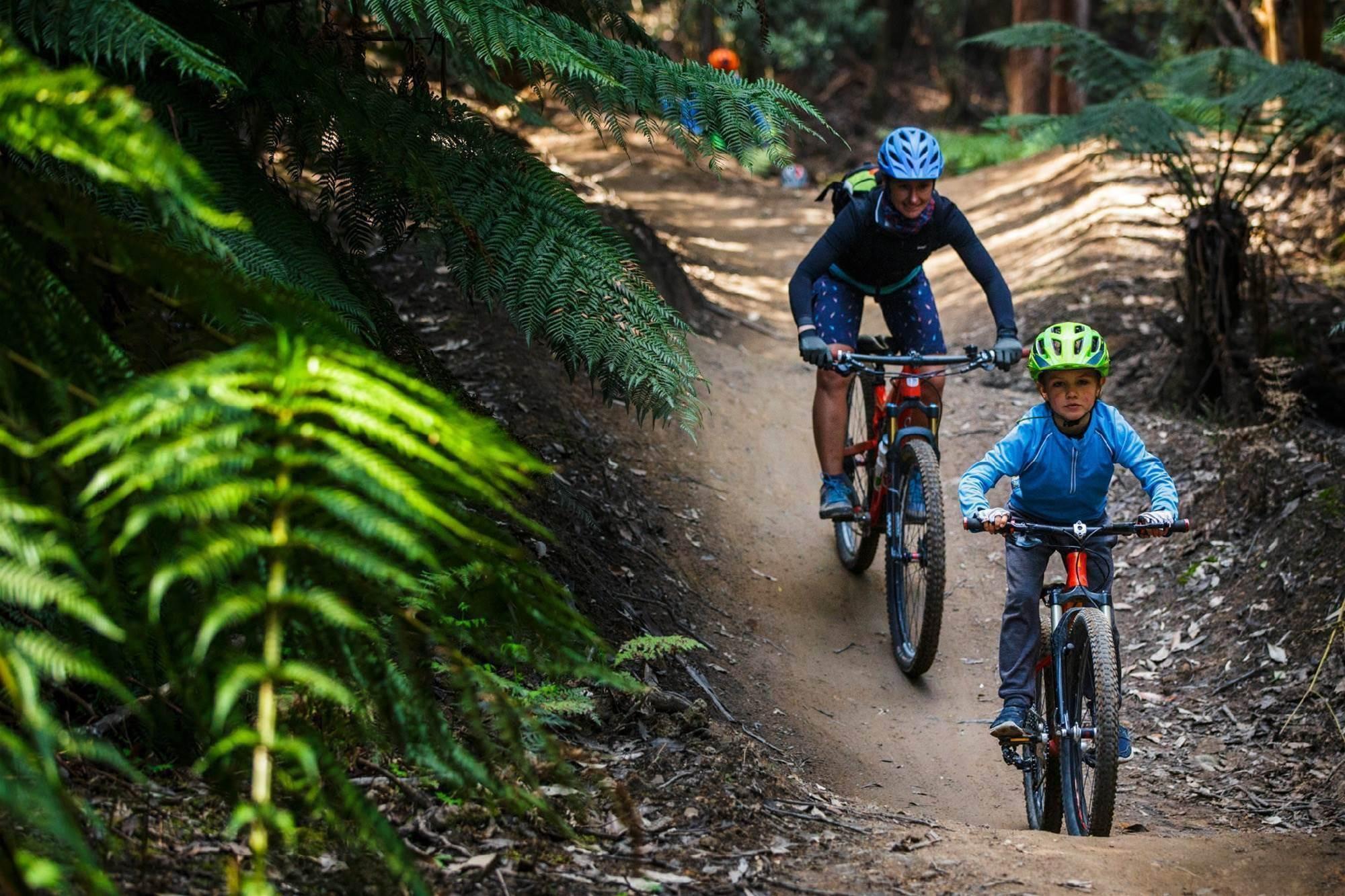 Maydena MTB Park opens Regnans Ride