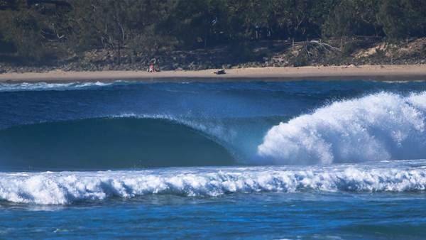 Shark Attack Site was Popular with Pro Surfers