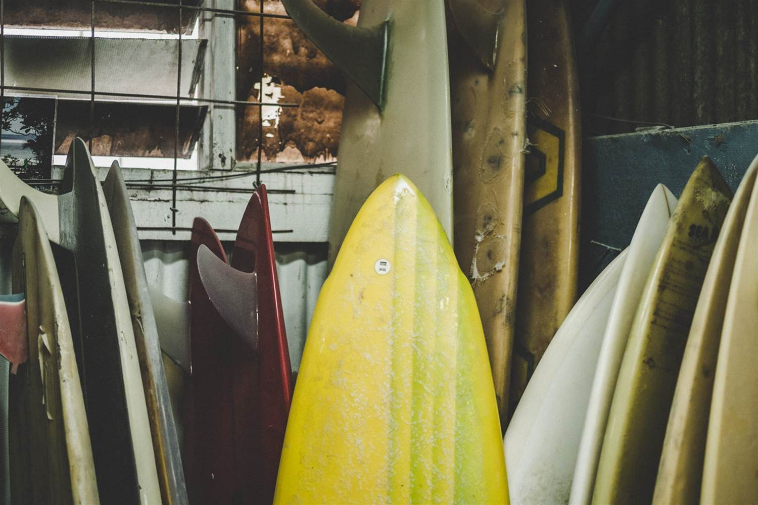 Surfing Tribes: Board Buyers