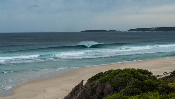 Locally Inspired Research at one of Australia's Sharkiest Waves.