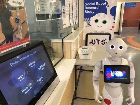 Sydney hospital trials multilingual wayfinding robot