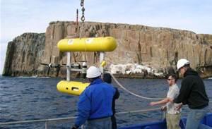 Autonomous underwater bot helps protect marine parks