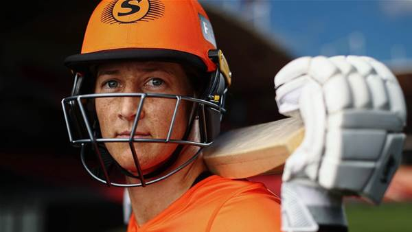 World's best descend on Sydney for WBBL Hub