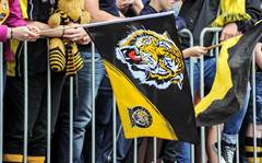 Watchguard partner gives Richmond Tigers remote access