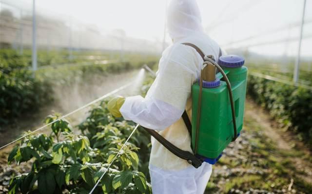 DXC migrates the Australian Pesticides and Veterinary Medicines Authority to Azure