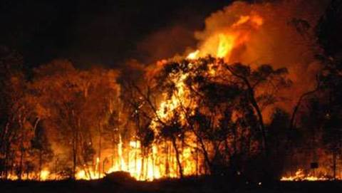 Telstra delays legacy copper disconnections for more fire-affected areas