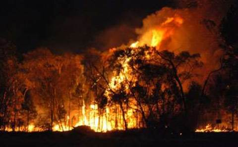 NSW turns to AI to predict bushfire activity