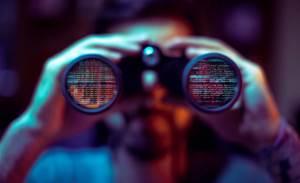 Govt has never considered a bug bounty program, says ASD