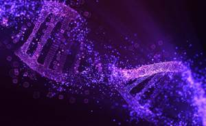 CSIRO uses AI to crunch a trillion genomic data points