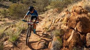 Understanding genetics and potential for MTB training