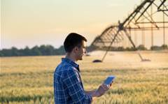 'Farming' grows security score for Sydney MSP LOOKUP