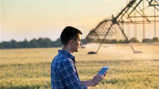 University of Newcastle to help improve farm IoT security