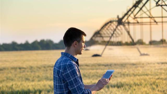Victorian Government taps NNNCo to rollout IoT network for farms
