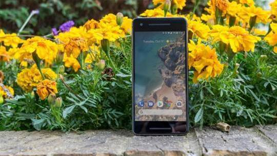 Will the Google Pixel 3 have a notch